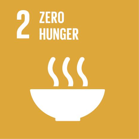 E SDG Icons 02