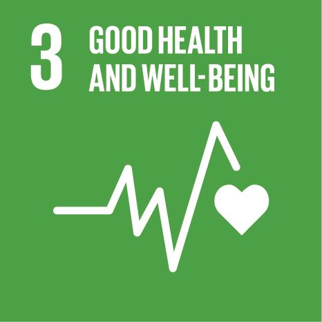 E SDG Icons 03