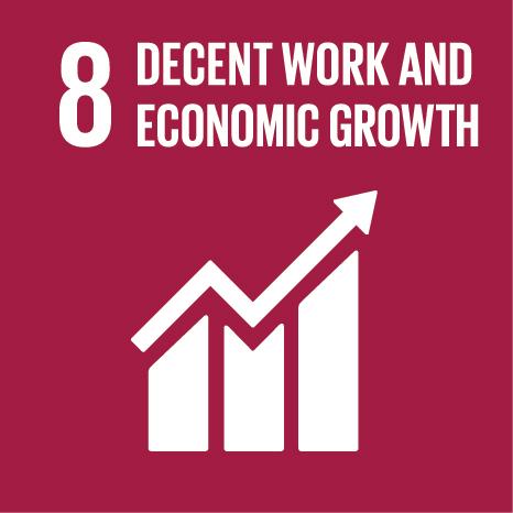 E SDG Icons 08
