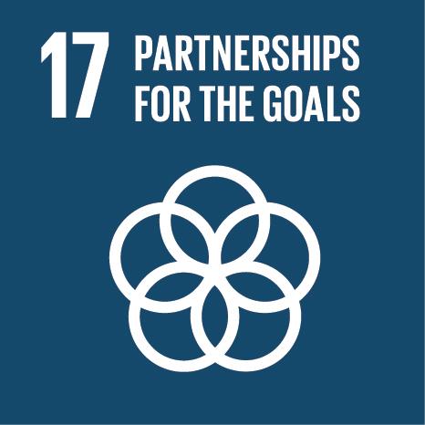 E SDG Icons 17